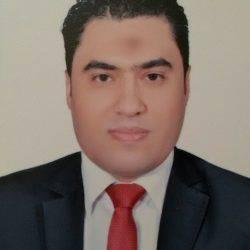 الكاتب د. محمد شلبي